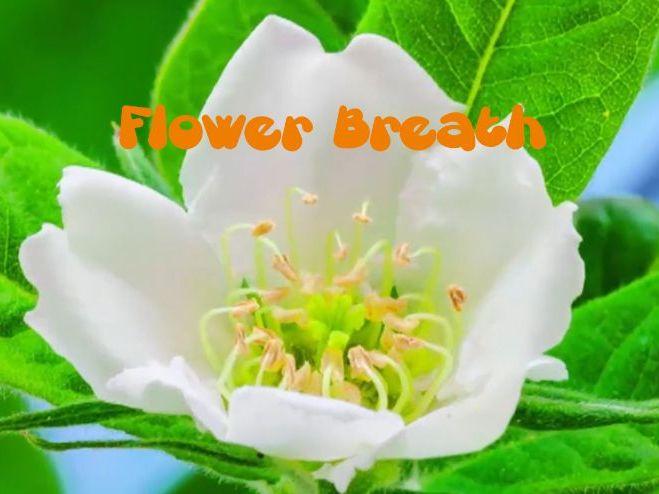 Flower Breath Mindfulness