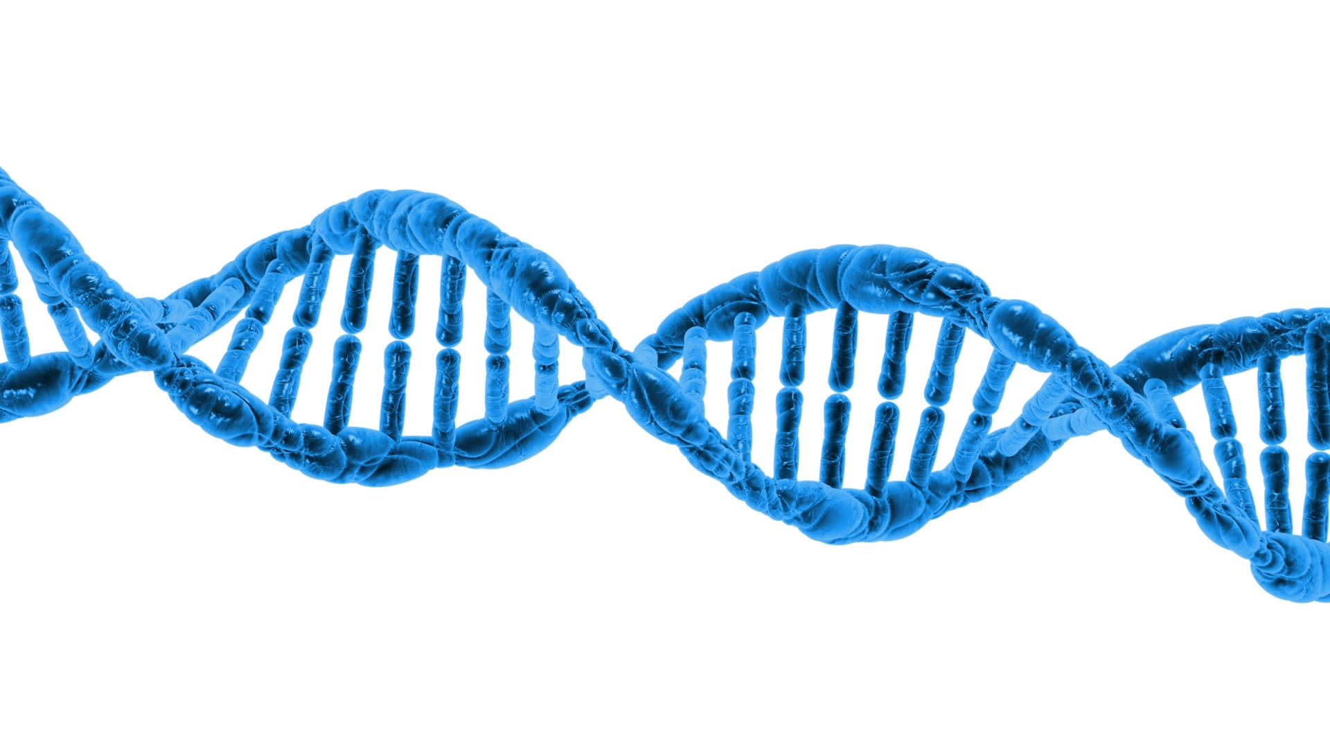 Alleles - Edexcel 9-1 GCSE Biology: Topic 3, lesson 4 Alleles