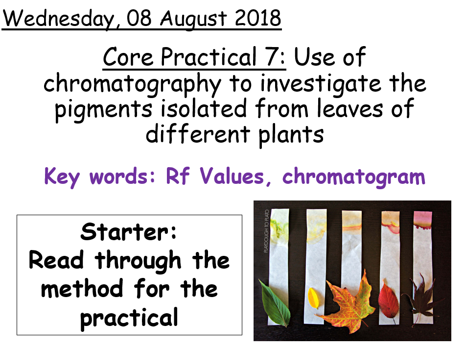 AQA A level Biology - Core Practical 7
