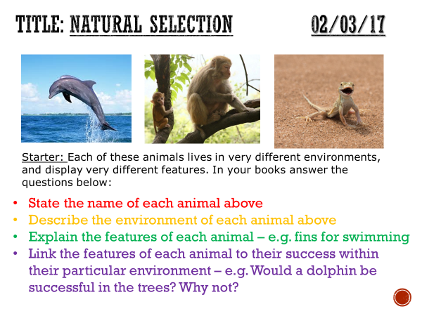 Evolution/Natural selection - complete lesson (KS3)