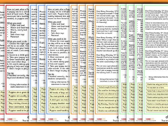 KS2 Reading Tests And Revision Year 6 Sats