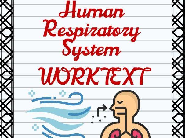 Human Respiratory System Worktext Activity Sheets