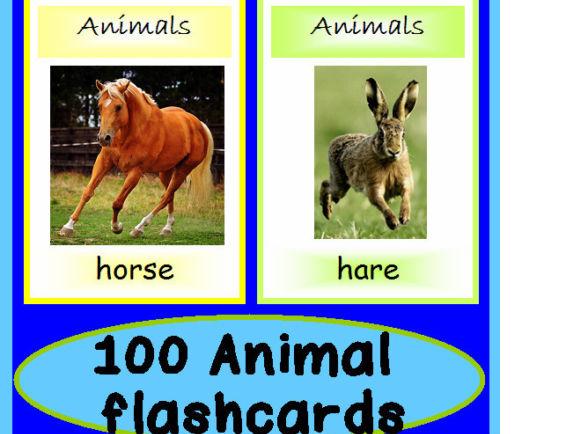 108 Animal Flashcards EYFS Resources Ks1 Ks2  Alphabet