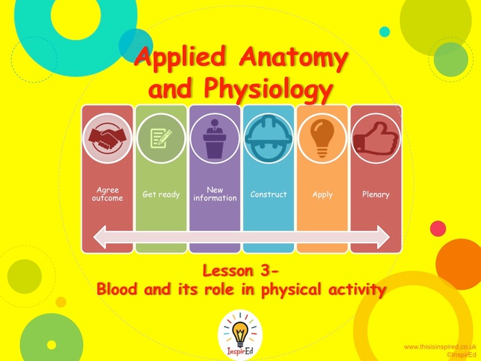 NEW Edexcel GCSE PE Unit 1 – Topic 1.2 – Cardiovascular System Lesson 3 (PowerPoint Presentation o