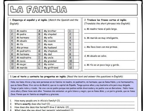 GCSE Spanish family and relationships worksheets