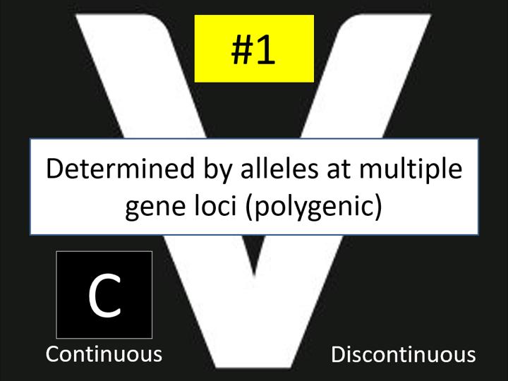 Phenotype (Edexcel A-level Biology A)