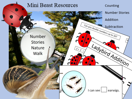 Minibeasts Numeracy