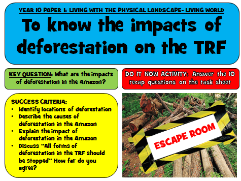 Tropical Rainforest Escape Room