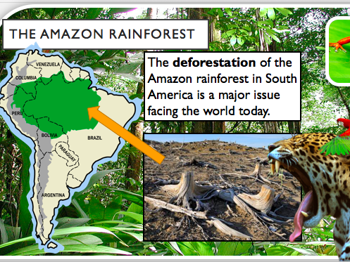 KS3 Brazil Scheme of Work- Holistic Geography 30 lessons