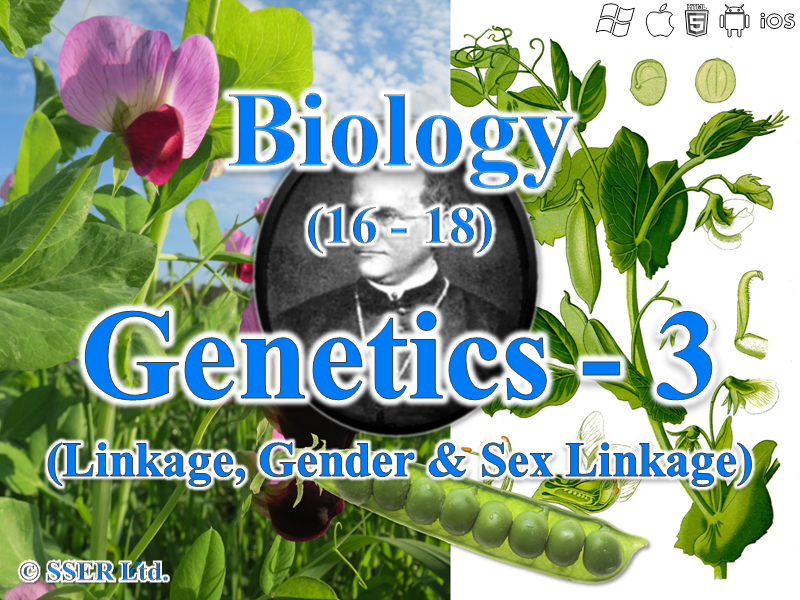 3.7.1 Genetics 3 - Linkage, Gender and Sex Linkage