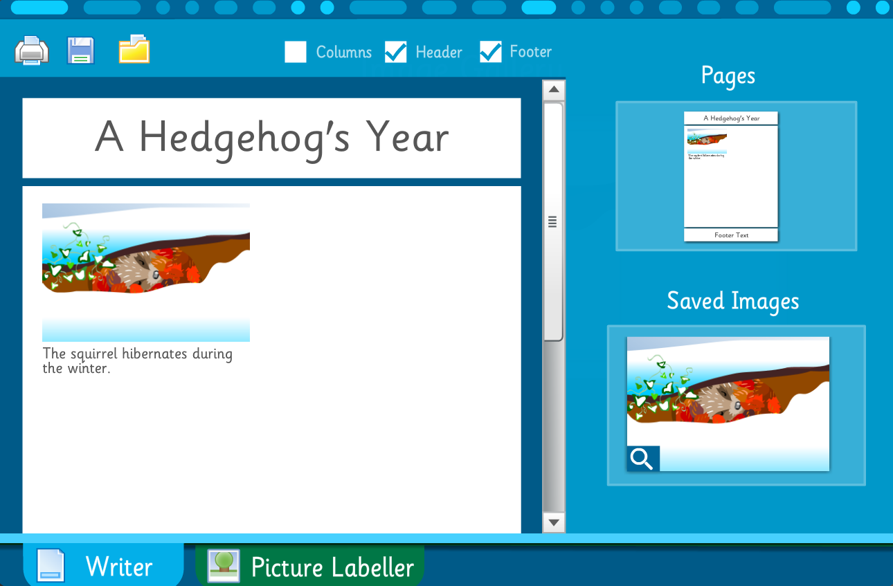 Make Your Own Information Poster: A Hedgehog's Year - Interactive Activity - KS2 Literacy