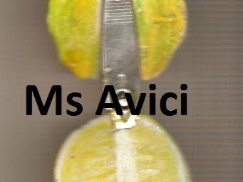 Lemon, nailclipper