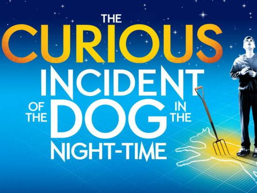The Curious Incident of the Dog in the Night-time- Drama