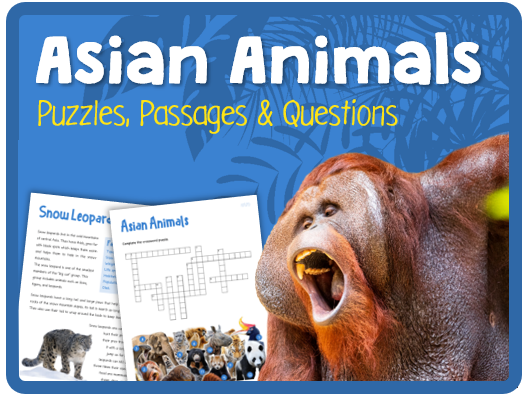 Asian Animals (Puzzes, reading & questions)