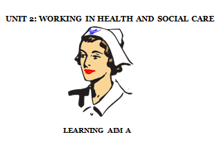 BTEC Level 3 Health and Social Care: Unit 2 - Working In  Health and Social Care [Learning Aim A]