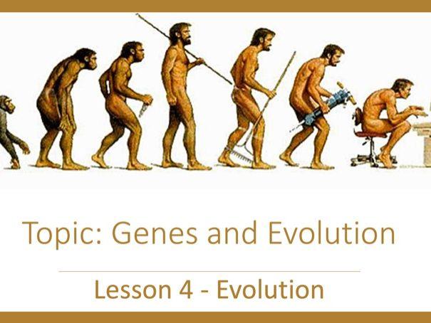 Evolution DL
