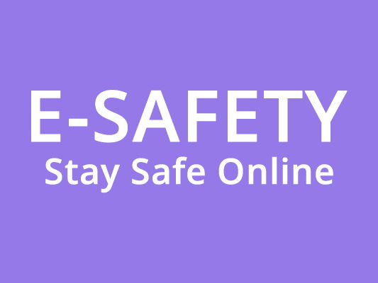 E safety for KS3 Y7 & Y8 - Full Unit