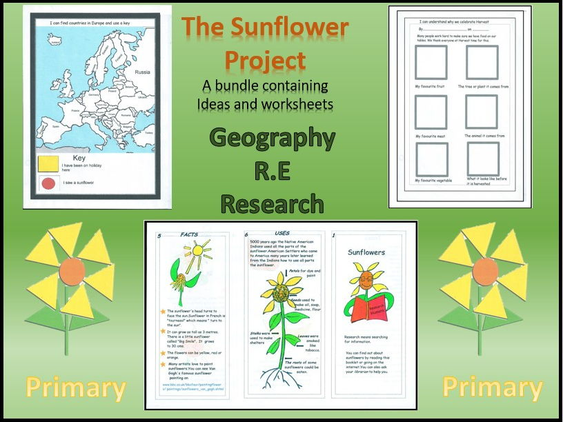 Geography, R.E. and Research . The Sunflower Project
