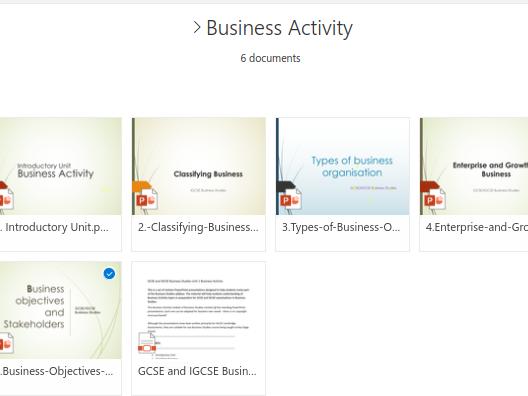 IGCSE/GCSE Business Activities (Unit 1)