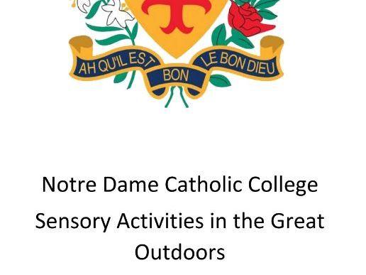 Outdoor Sensory Activities