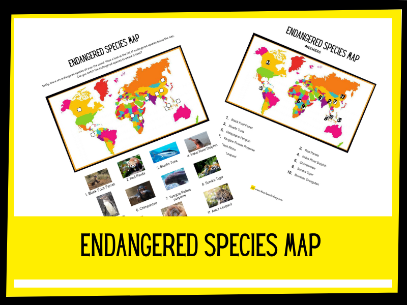 Endangered Species Map Labelling activity