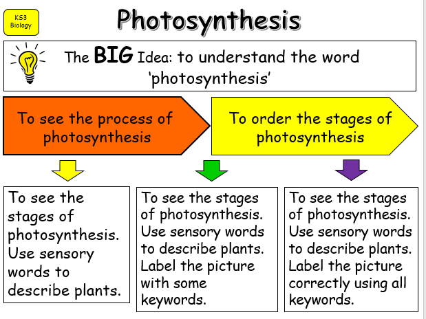 Introduction to Photosynthesis KS2-3 SEND