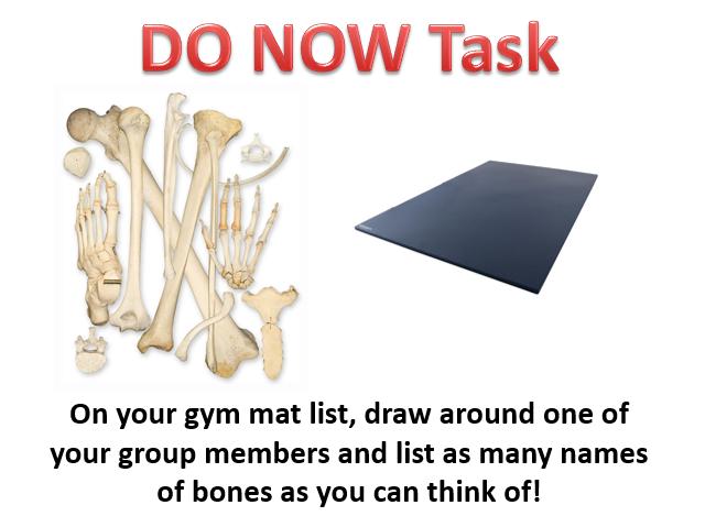 GCSE AQA PE Skeletal System Lesson