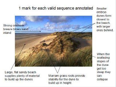 coastal landforms of deposition
