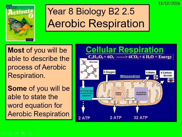"""A multimedia version of the Year 8 B2 2.5 """"Aerobic Respiration"""" lesson."""