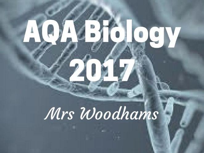 NEW AQA Biology GCSE B3 Enzymes