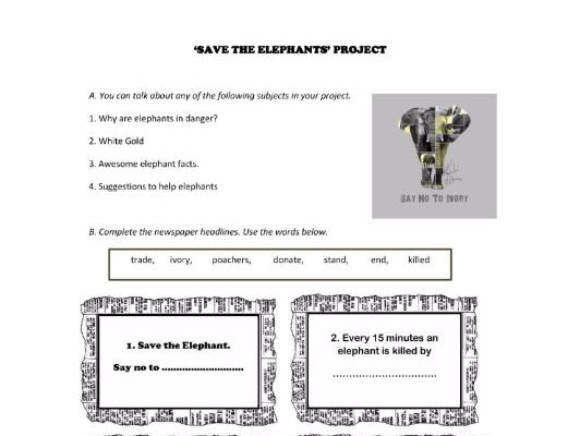 Save the Elephants project
