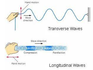 Common properties of waves