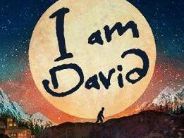 """""""I am David"""" by Anne Holm Resource Bundle:  full whole term unit - Year 6 reading/SPaG curriculum"""