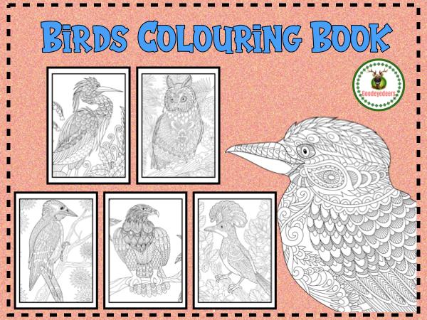 Birds Colouring Book - A Treetop Adventure
