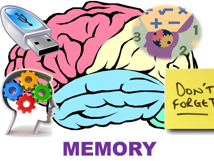 AQA Student Workbook - Memory