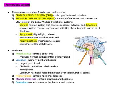 OCR Alevel Biology Module 5 Notes