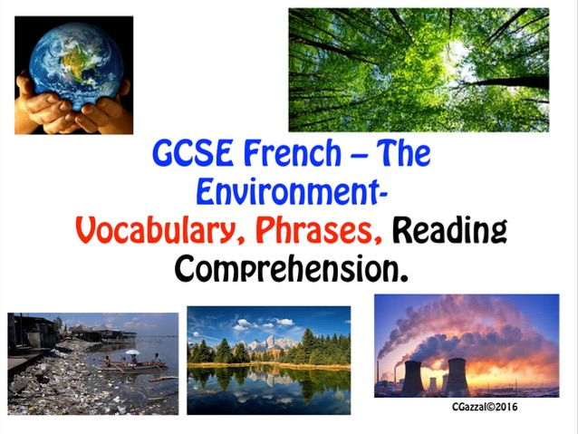 GCSE French Environmental Issues - Reading Comp, Vocabulary, Phrases, Exercises.