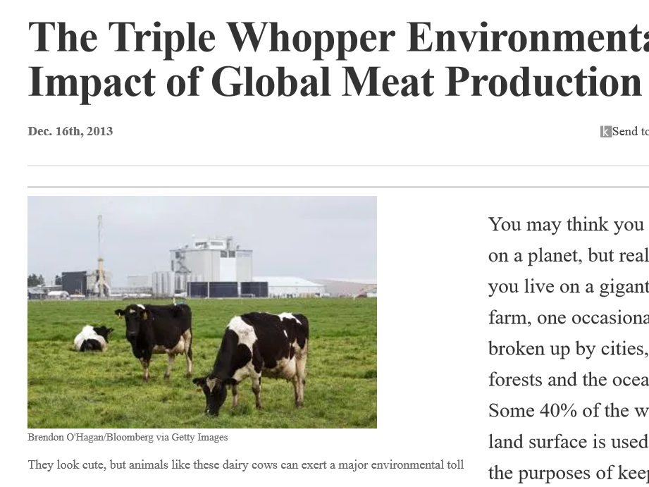The Impact of Global Meat Production- Article and Worksheet