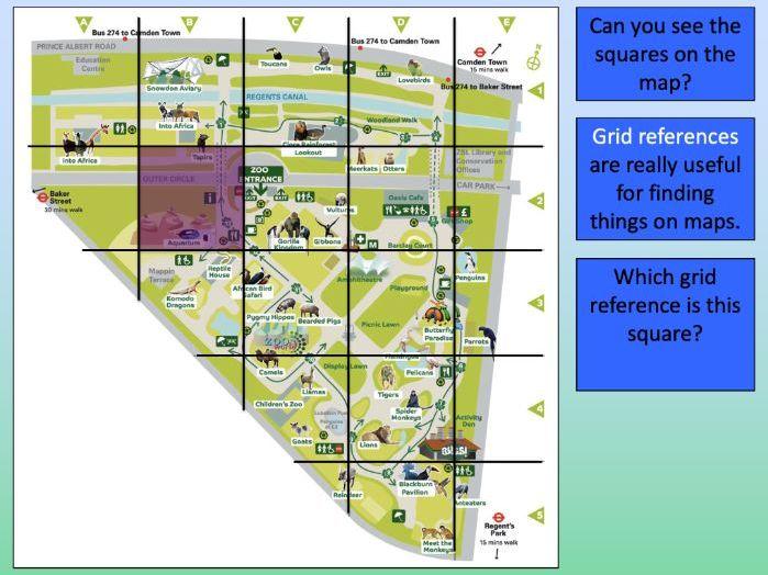 Using grid references at London Zoo - KS1/KS2