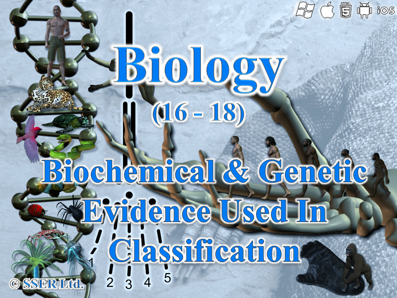 3.4.7 Biochemical & Genetic Evidence Used In Classification