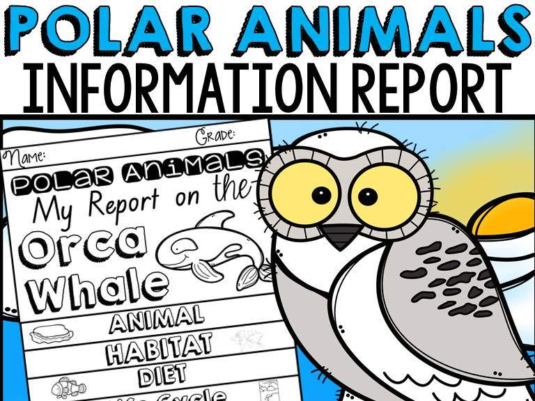 ANIMAL REPORT: POLAR ANIMALS: INFORMATIVE WRITING: RESEARCH TEMPLATES