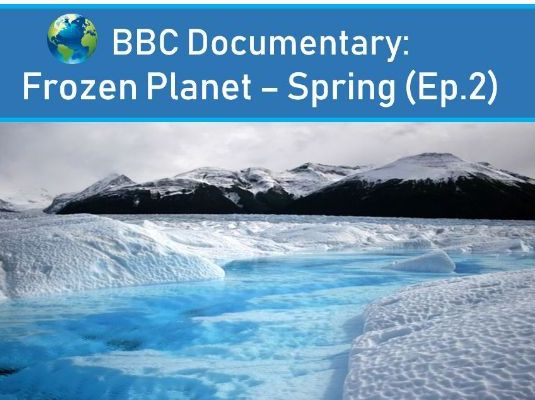 Frozen Planet - Spring