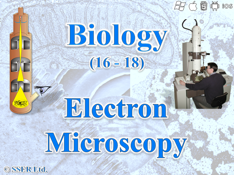 3.2.1.3 Studying Cells 3 - Electron Microscopy