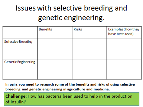 New Edexcel 9 1 Biology Genetic Engineering And Selective Breeding