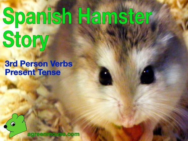 My Hamster in Spanish Story + Worksheets + Video