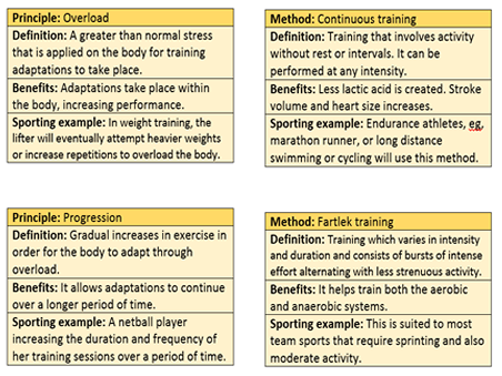 GCSE PE OCR 9-1 Revision Flash Card bundle