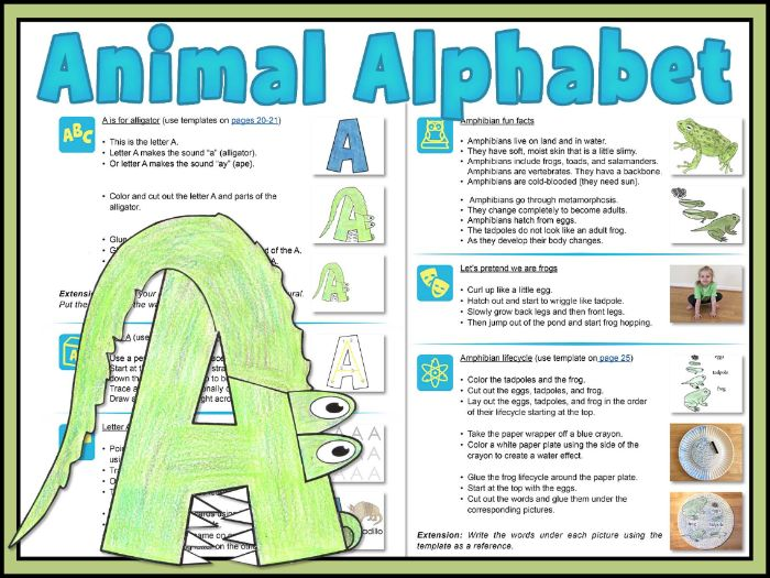 Animal Alphabet: explore animals from A to Z