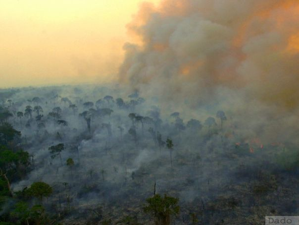 Indirect threats to the Rainforest - Climate Change - GEOGRAPHY GCSE 9-1 WHOLE LESSON