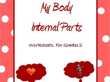 Body - Internal Organs, Bones, Joints & Muscles- Worksheets for Grade 2 & 3