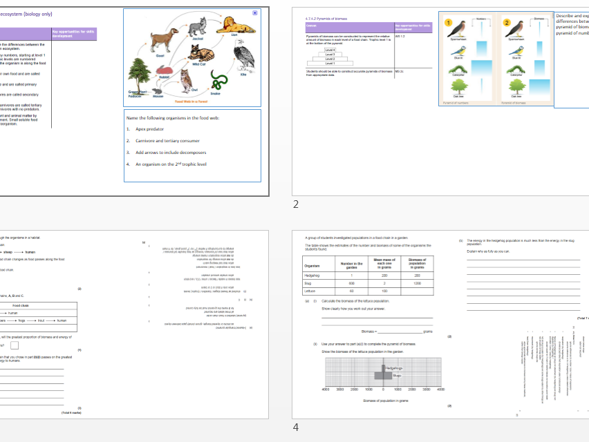 Trophic levels GCSE 9-1 revision booklet